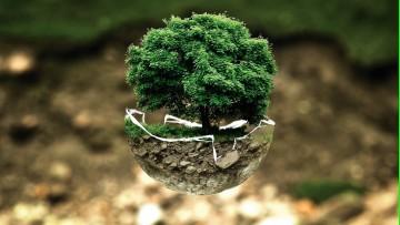 Educación, ambiente, sociedades y energía serán temáticas de dos conferencias