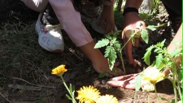 Se brindará ciclo de formación en prácticas sociales educativas