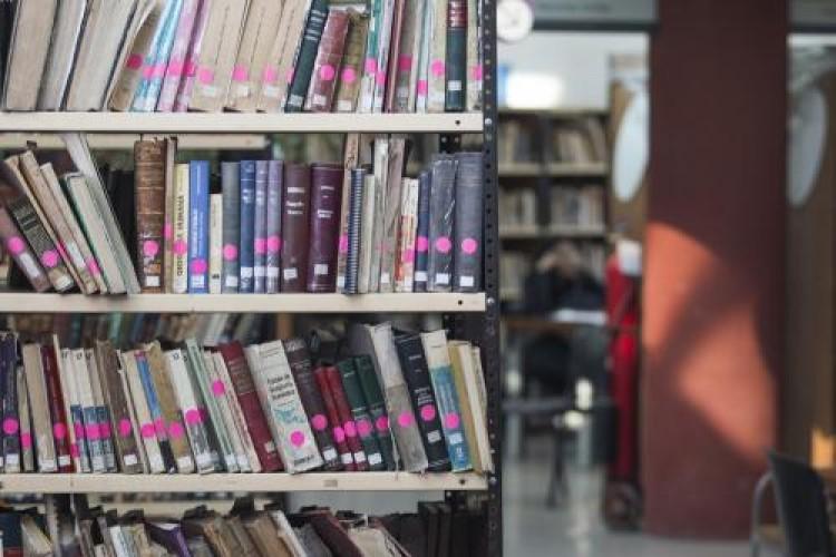 13 de septiembre: Día del Bibliotecario