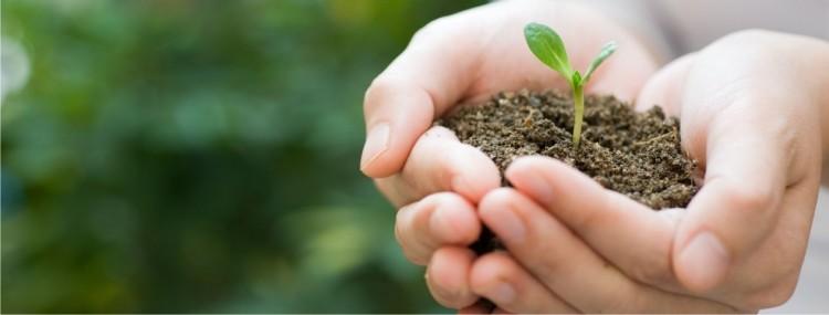 Abordarán la educación socioambiental en charla abierta