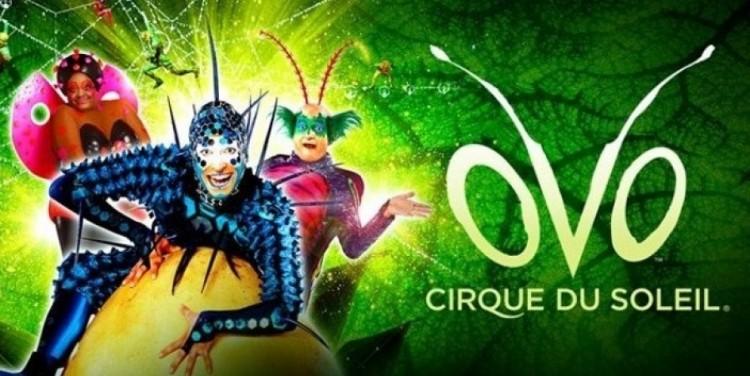 Más entradas de Cirque du Soleil para la comunidad de la UNCUYO