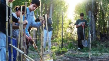 Ofrecen formación en prácticas sociales educativas