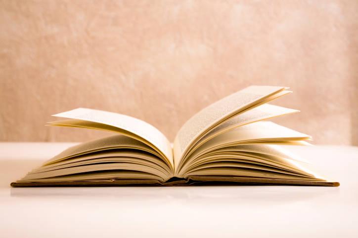 Podrá adquirirse libro sobre Didáctica de la Lectura y la Escritura en la Facultad
